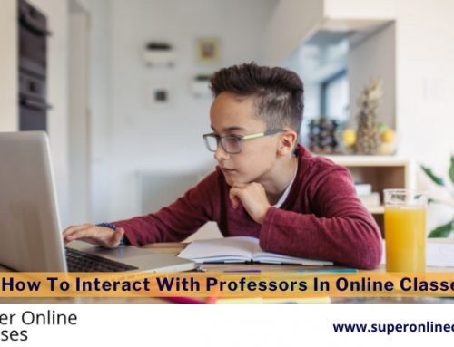 How To Interact With Professors In Online Classes